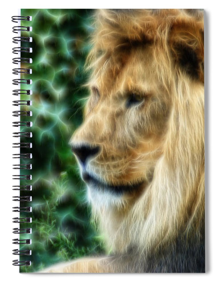 Lion Spiral Notebook featuring the photograph Lazy Boy Day Dream At The Buffalo Zoo by Michael Frank Jr