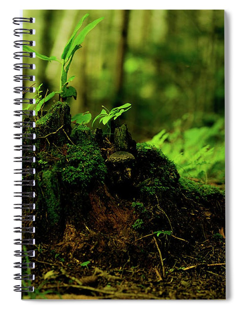 Hokkaido Spiral Notebook featuring the photograph Leaf Bud by Plasticboystudio