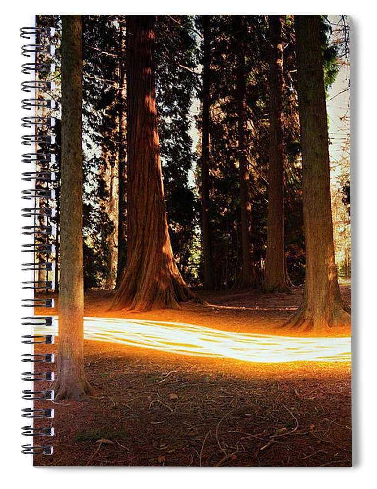 Kent Spiral Notebook featuring the photograph Light Trail Passing Around Trees by Robert Decelis Ltd
