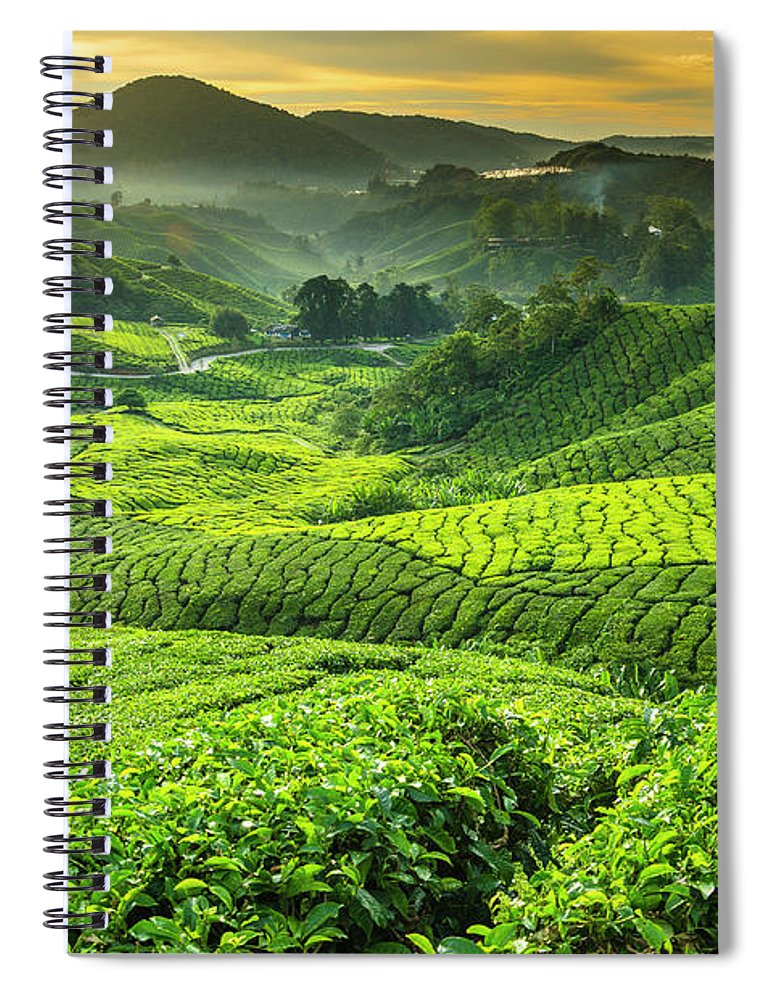Cameron Highlands Spiral Notebook featuring the photograph Malaysia, Pahang, Cameron Highlands by Cescassawin