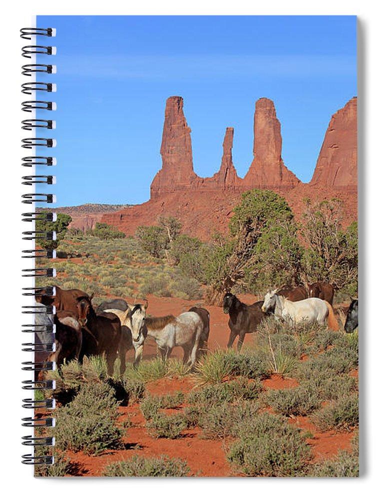 Scenics Spiral Notebook featuring the photograph Mustang by Tier Und Naturfotografie J Und C Sohns