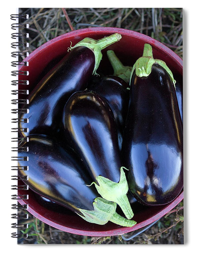 Grass Spiral Notebook featuring the photograph Organic Eggplant by John Burke