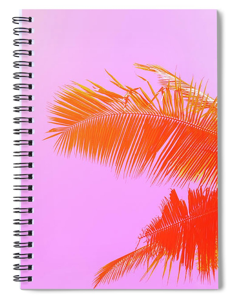 Orange Color Spiral Notebook featuring the photograph Palm Tree On Sky Background. Palm Leaf by Slavadubrovin