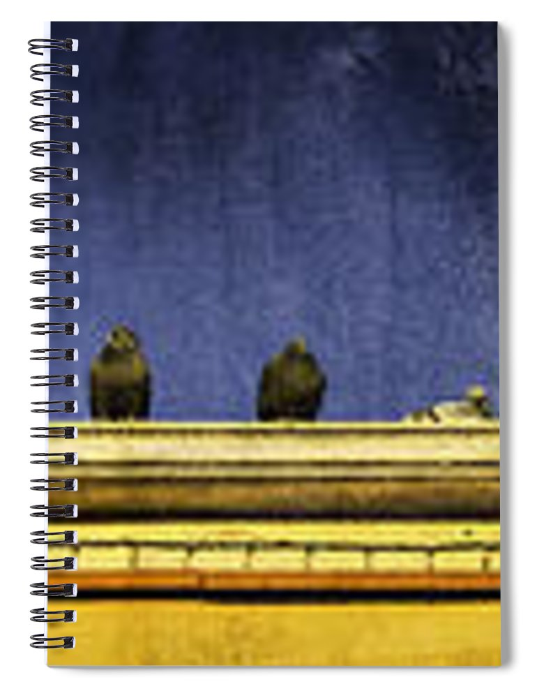 Granville Island Spiral Notebook featuring the photograph Pigeons On Yellow Roof by Peter v Quenter