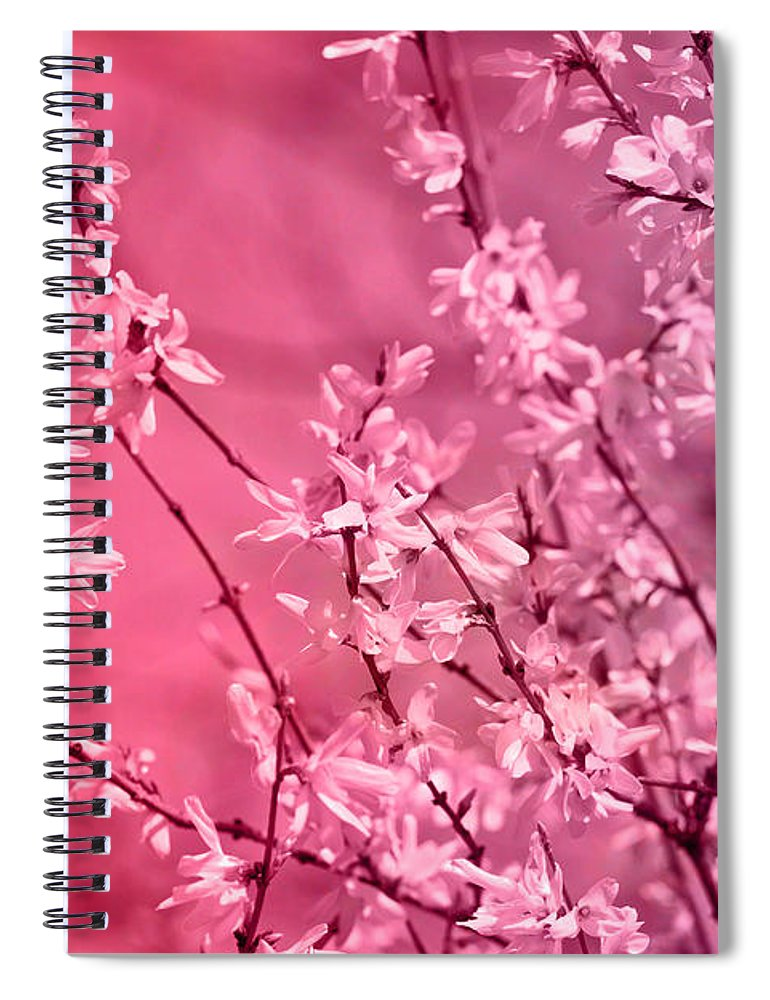 Pink Forsythia Spiral Notebook For Sale By Pati Photography