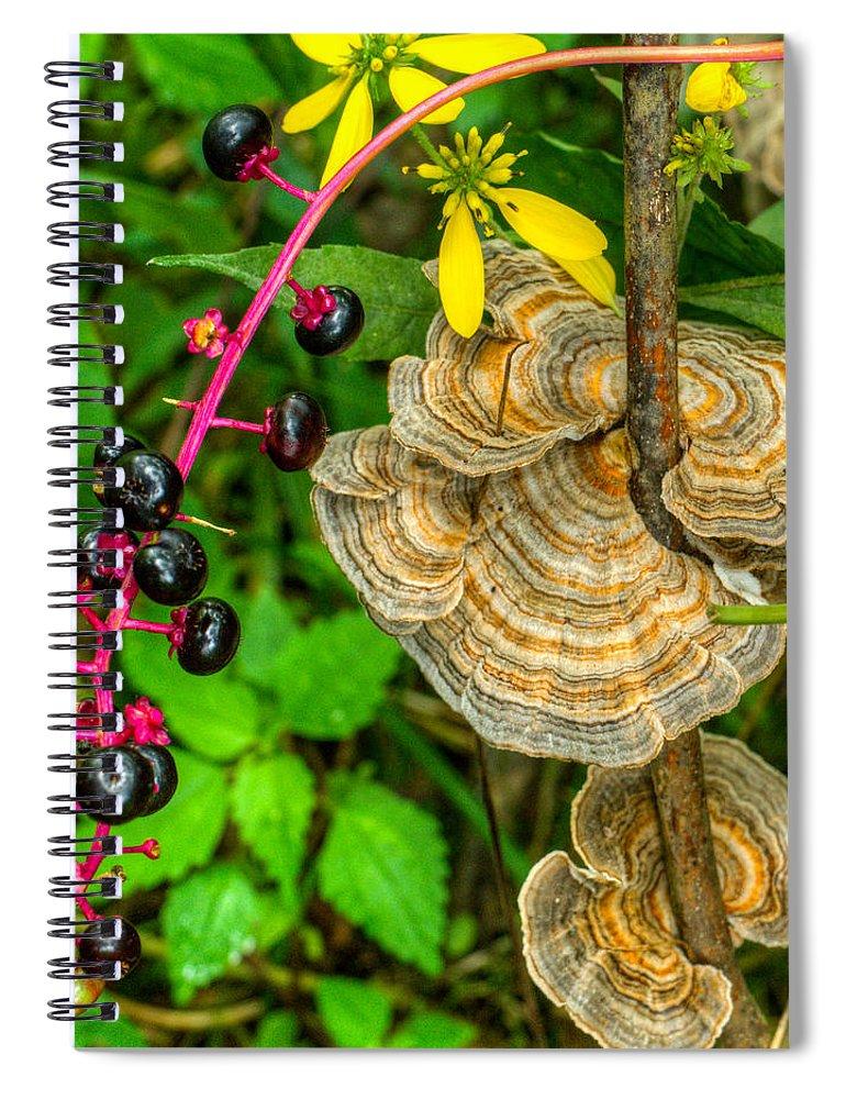 Poke Spiral Notebook featuring the photograph Poke And Bracket Fungi by Douglas Barnett