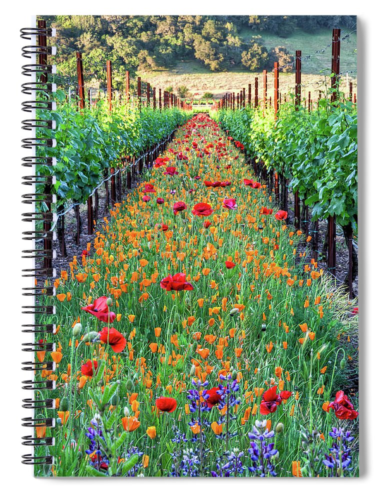 Tranquility Spiral Notebook featuring the photograph Poppy Lined Vineyard by Rmb Images / Photography By Robert Bowman