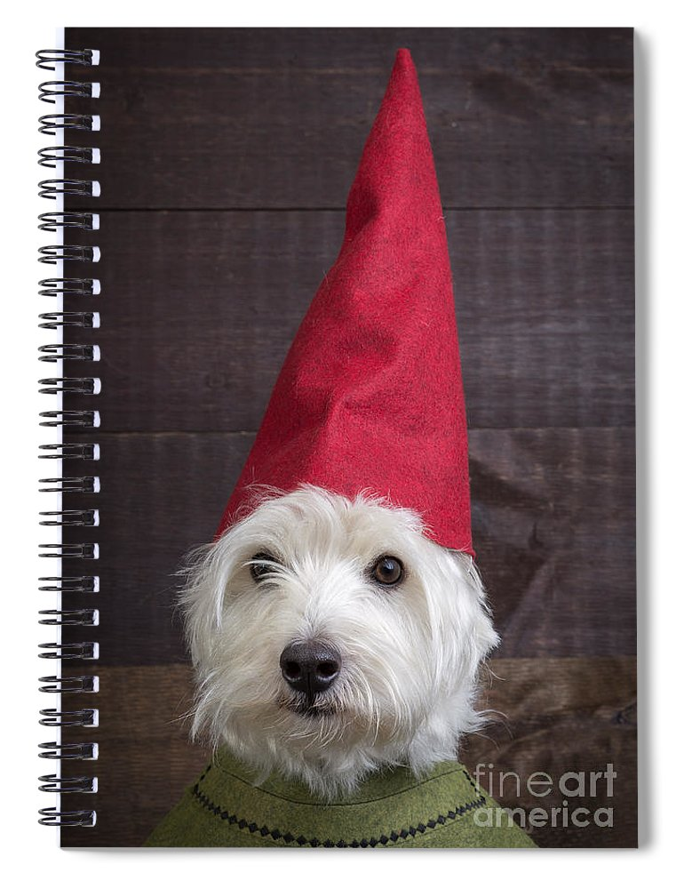 Garden Spiral Notebook featuring the photograph Portrait Of A Garden Gnome by Edward Fielding