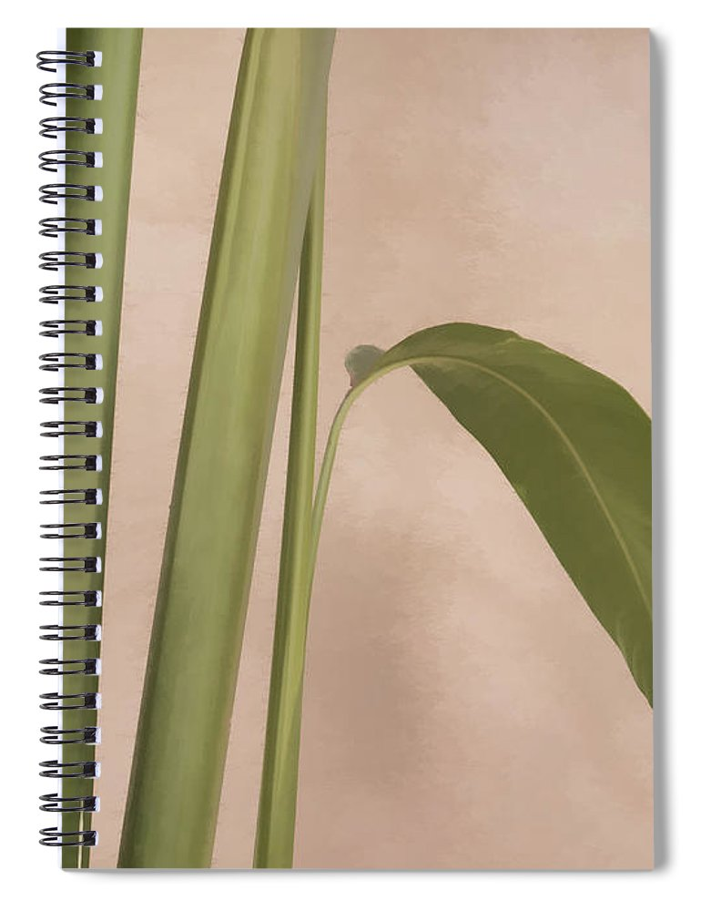 Cool Spiral Notebook featuring the photograph Quietly by Carol Leigh