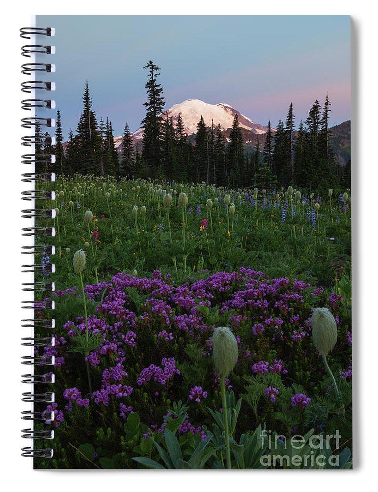 Rainier Spiral Notebook featuring the photograph Rainier Pastel Dawn by Mike Dawson