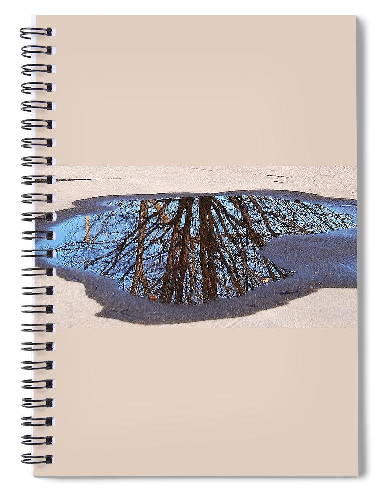 Reflection Spiral Notebook featuring the photograph Reflection by Lisa Kane