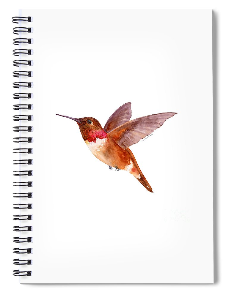 Bird Spiral Notebook featuring the painting Rufous Hummingbird by Amy Kirkpatrick