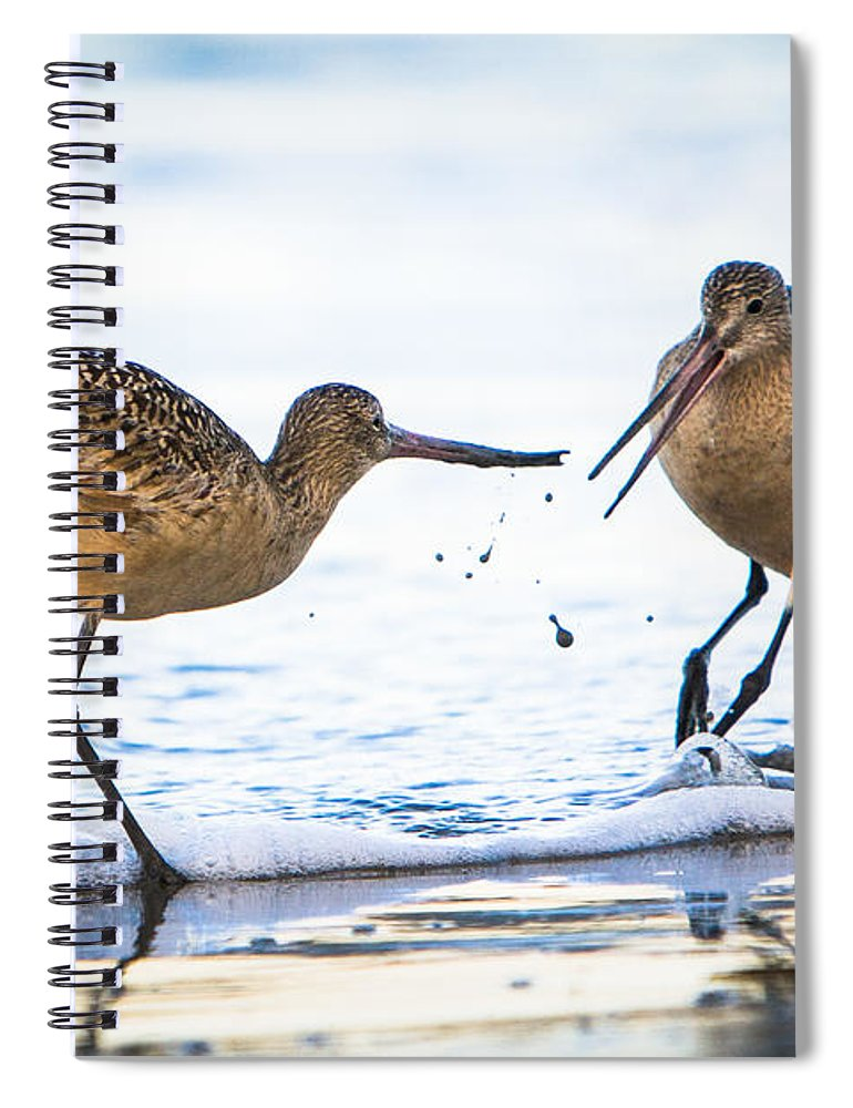 America Spiral Notebook featuring the photograph Sanderlings Playing At The Beach by John Wadleigh
