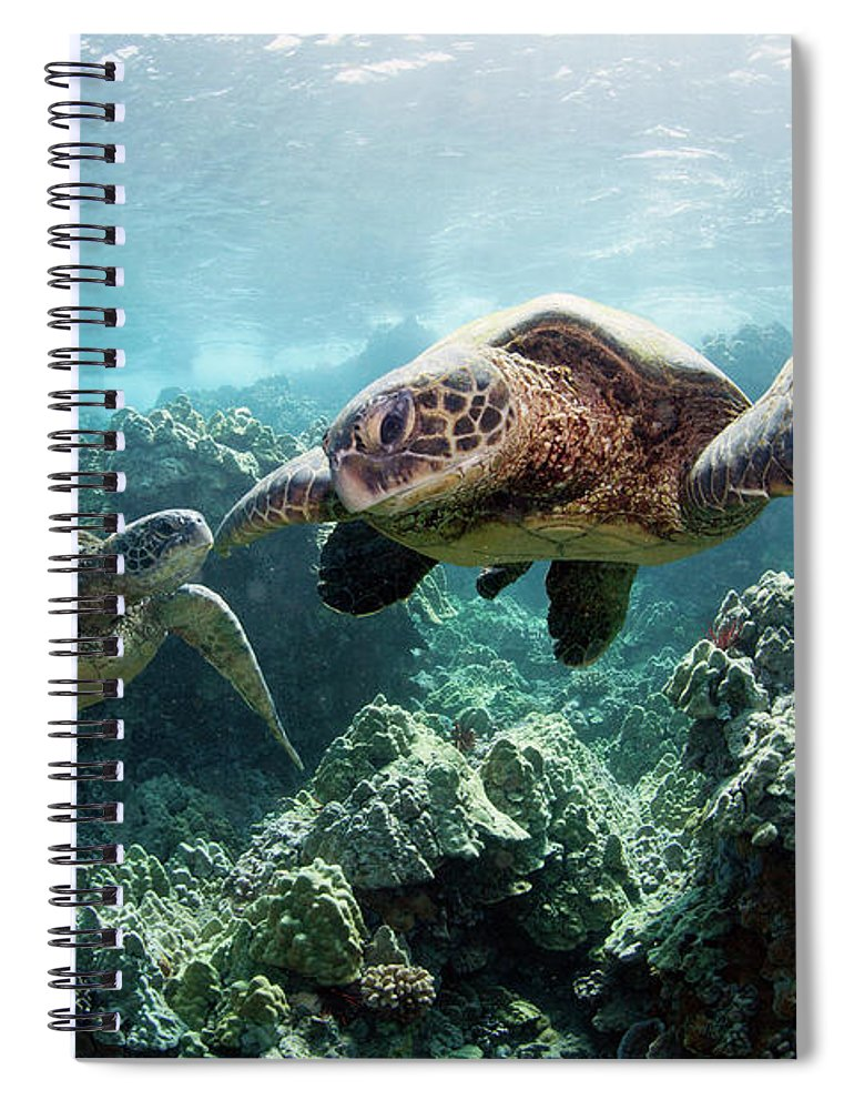 Underwater Spiral Notebook featuring the photograph Sea Turtles by M Swiet Productions