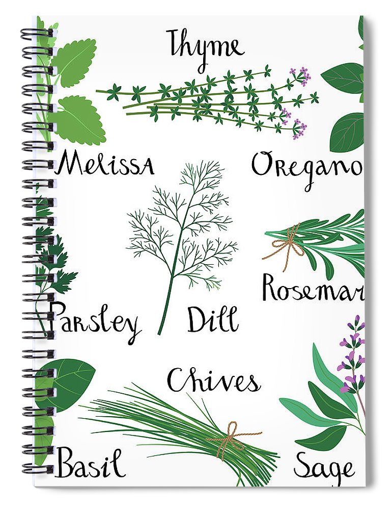 Domestic Room Spiral Notebook featuring the digital art Set Of Fresh Herbs by Innabodrova