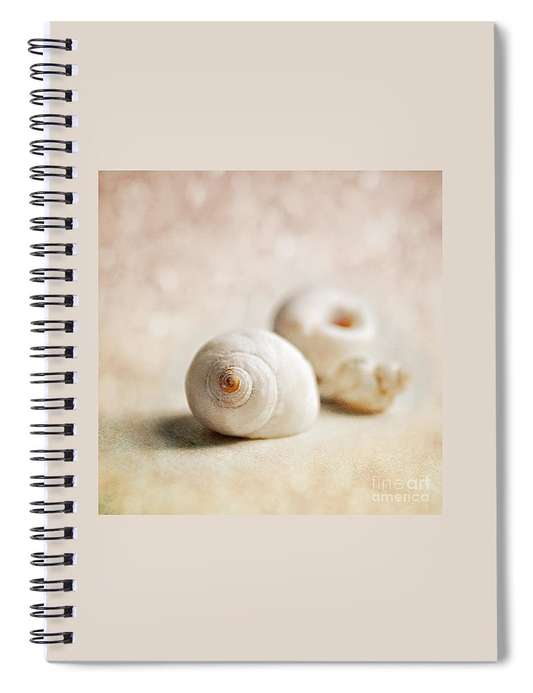 Shells Spiral Notebook featuring the photograph Shells by Lyn Randle