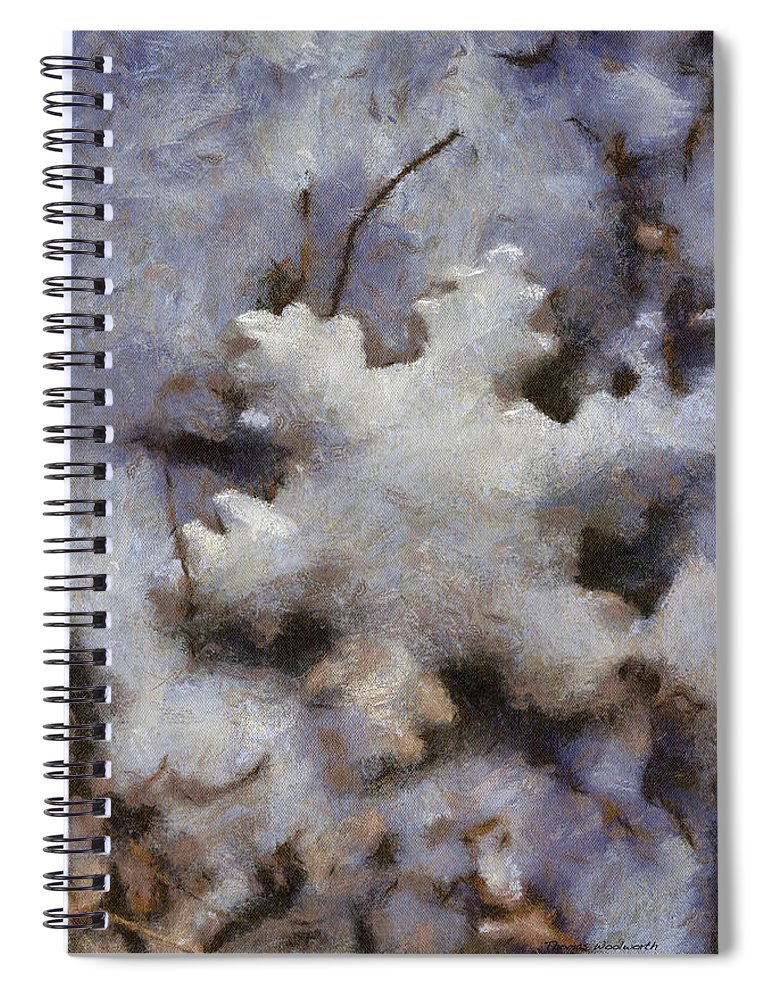 Season Spiral Notebook featuring the photograph Snow Flake 02 Photo Art by Thomas Woolworth