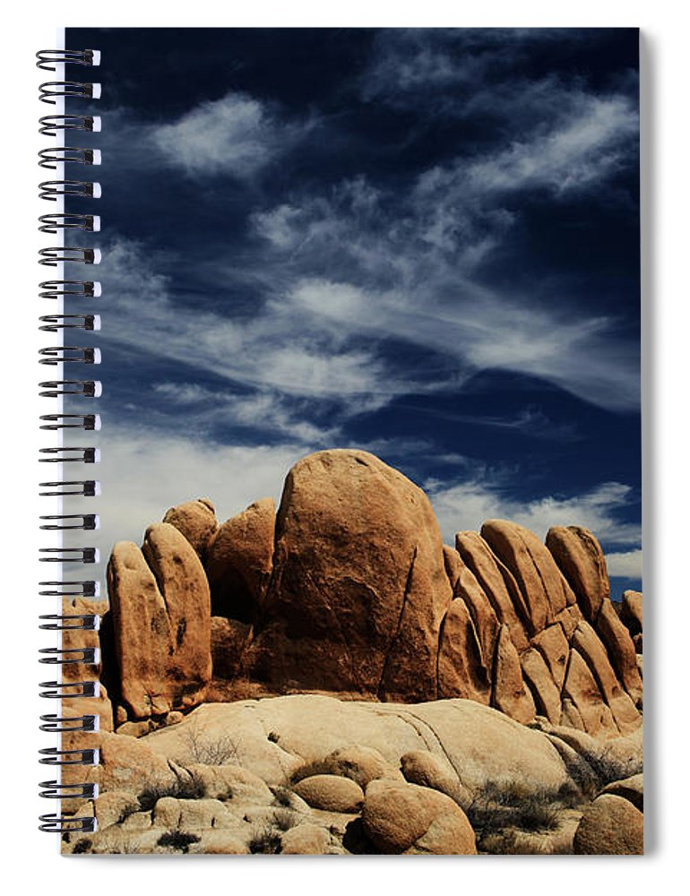 Joshua Tree National Park Spiral Notebook featuring the photograph Songs Of Misery by Laurie Search