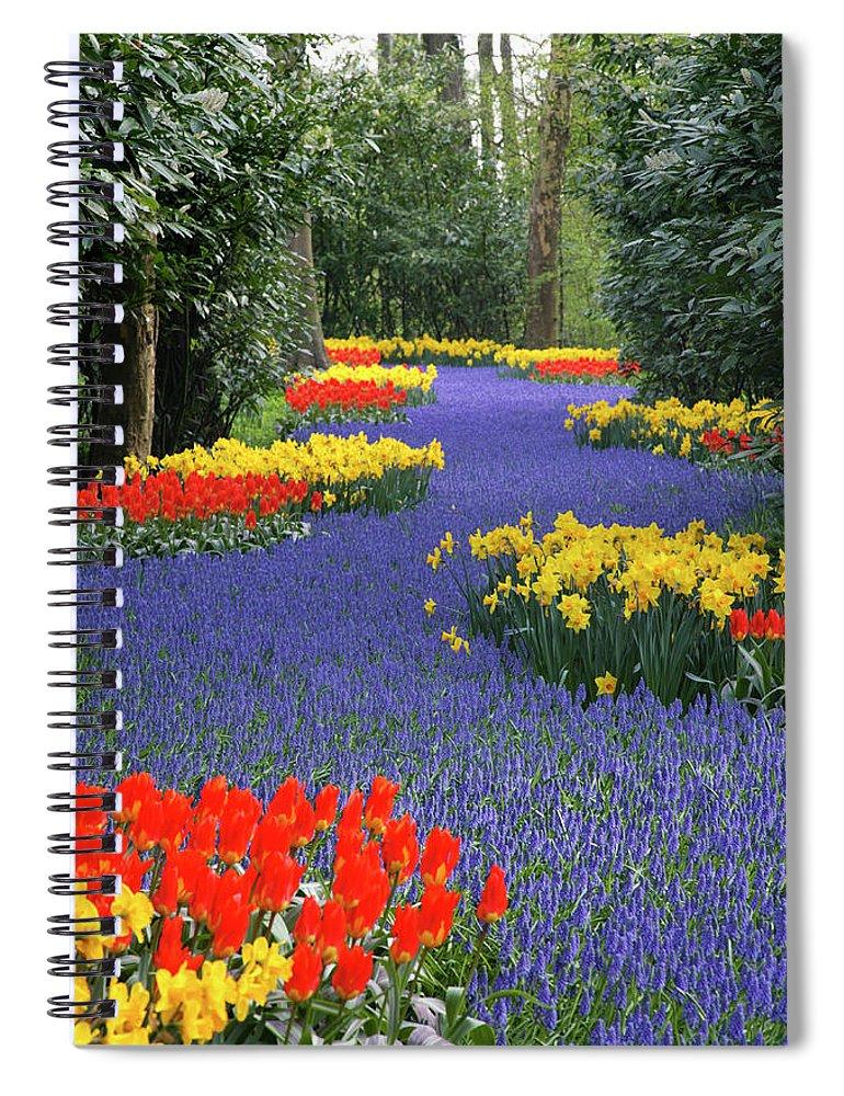 Netherlands Spiral Notebook featuring the photograph Springtime Keukenhof Gardens With by Manfred Gottschalk