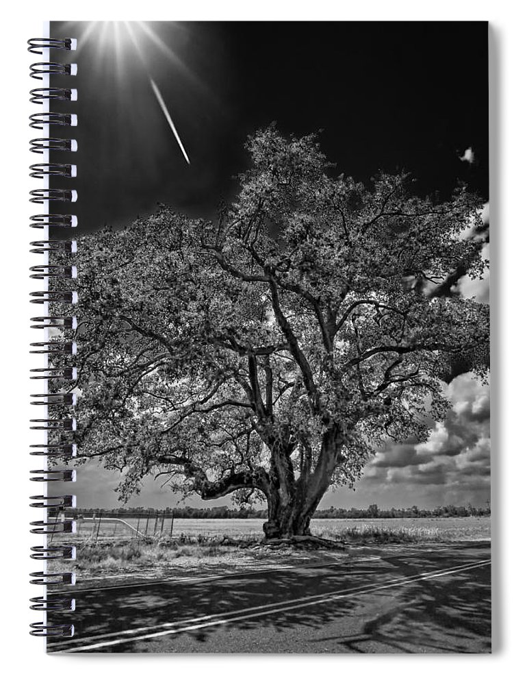New Orleans Spiral Notebook featuring the photograph Stardom Bw by Steve Harrington