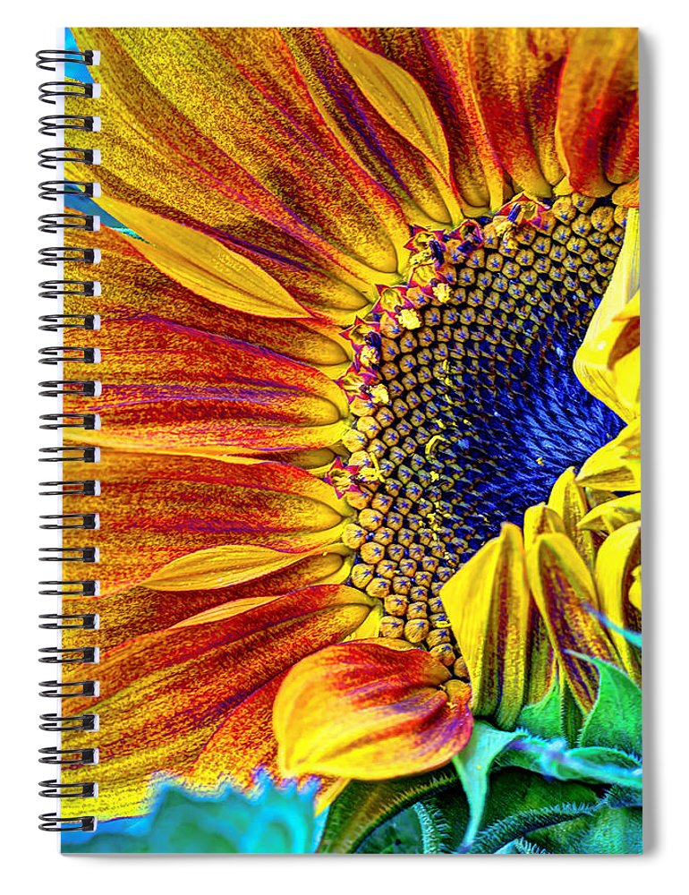Sunflower Spiral Notebook featuring the photograph Sunflower Abstract by Heidi Smith