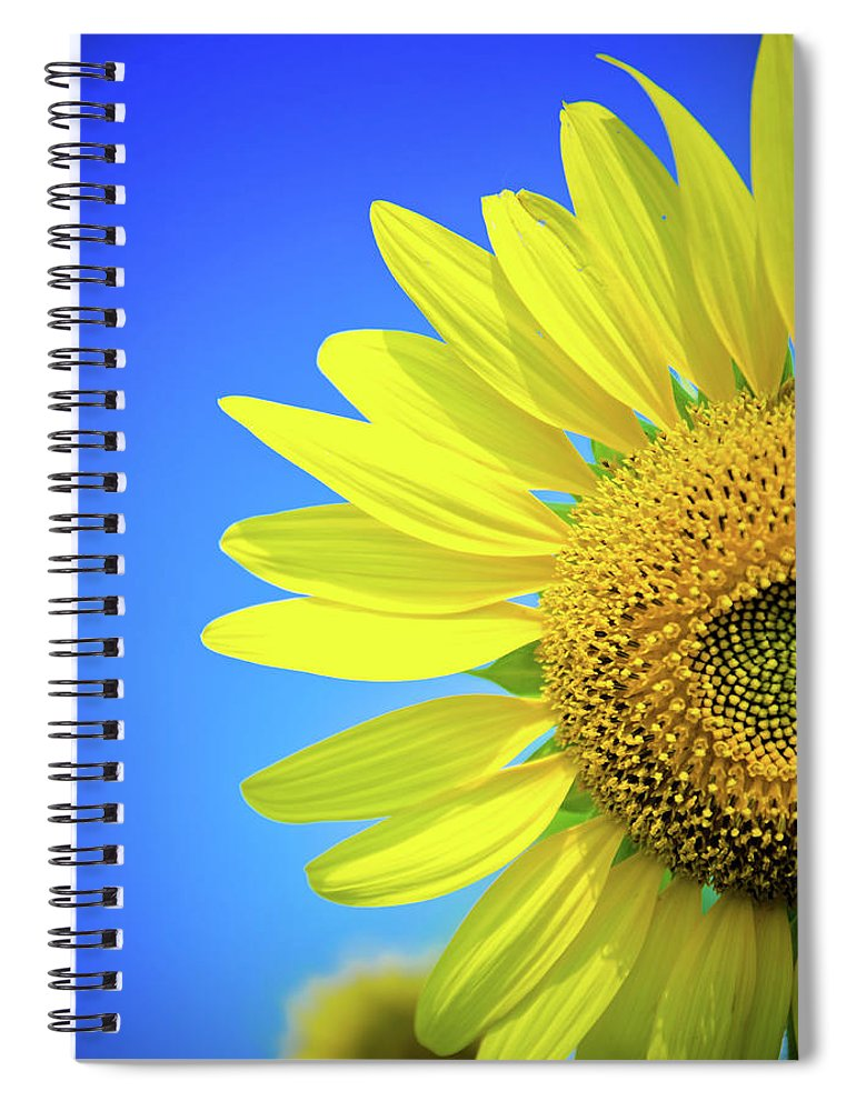 Clear Sky Spiral Notebook featuring the photograph Sunflower Against Blue Sky by N. Umnajwannaphan