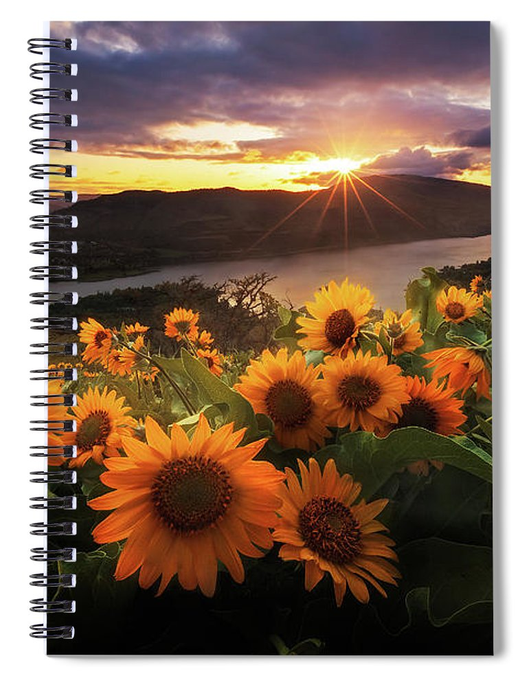 Outdoors Spiral Notebook featuring the photograph Sunflower Field by Jeremy Cram Photography