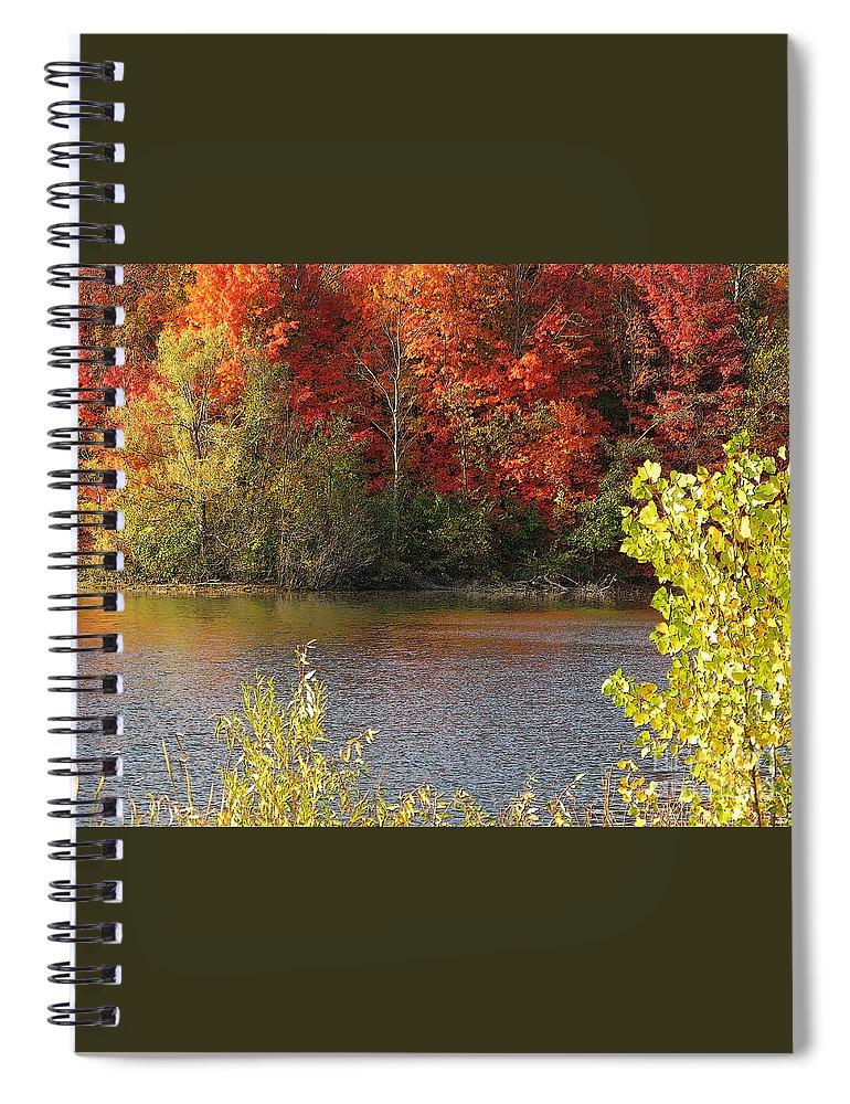 Autumn Spiral Notebook featuring the photograph Sunlit Autumn by Ann Horn