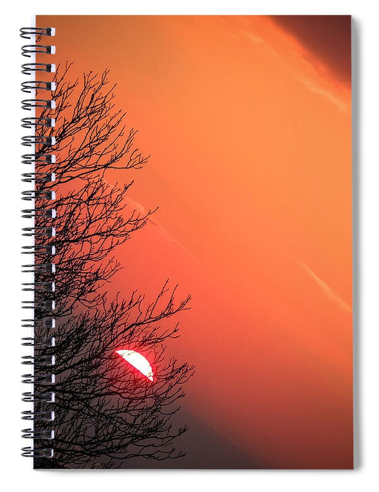 Ireland Spiral Notebook featuring the photograph Sunrise And Hibernating Tree by James Truett