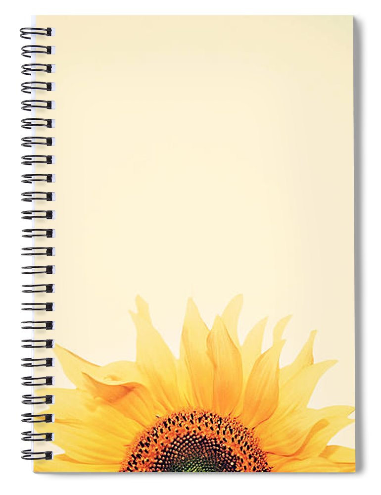 Summer Spiral Notebook featuring the photograph Sunrise by Carrie Ann Grippo-Pike