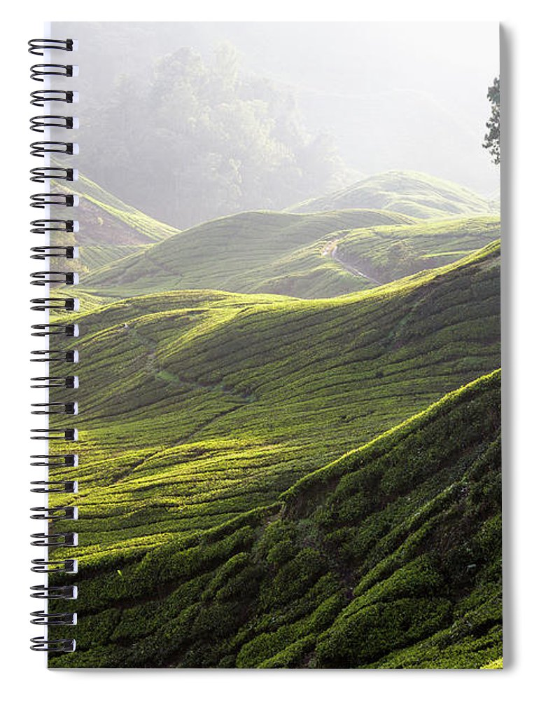 Tranquility Spiral Notebook featuring the photograph Tea Estate by Daniel Osterkamp