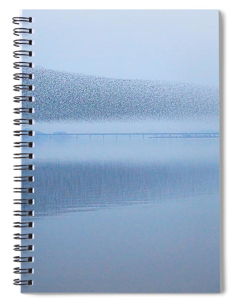 Scenics Spiral Notebook featuring the photograph The Baikal Teals by Penboy