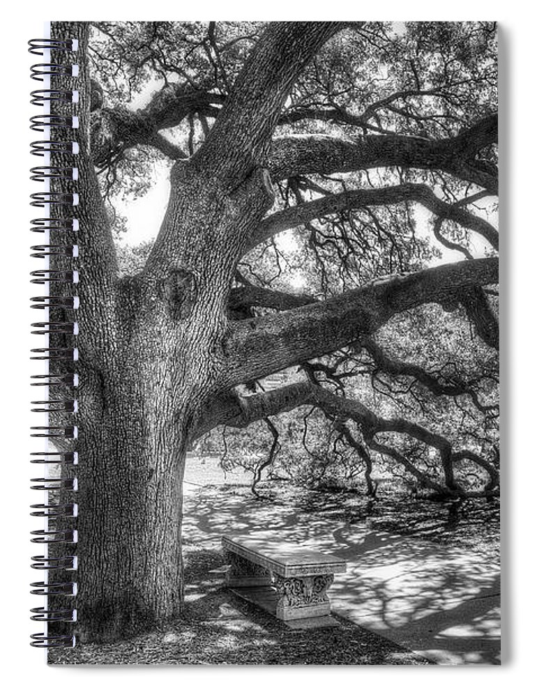 Tree Spiral Notebook featuring the photograph The Century Oak by Scott Norris