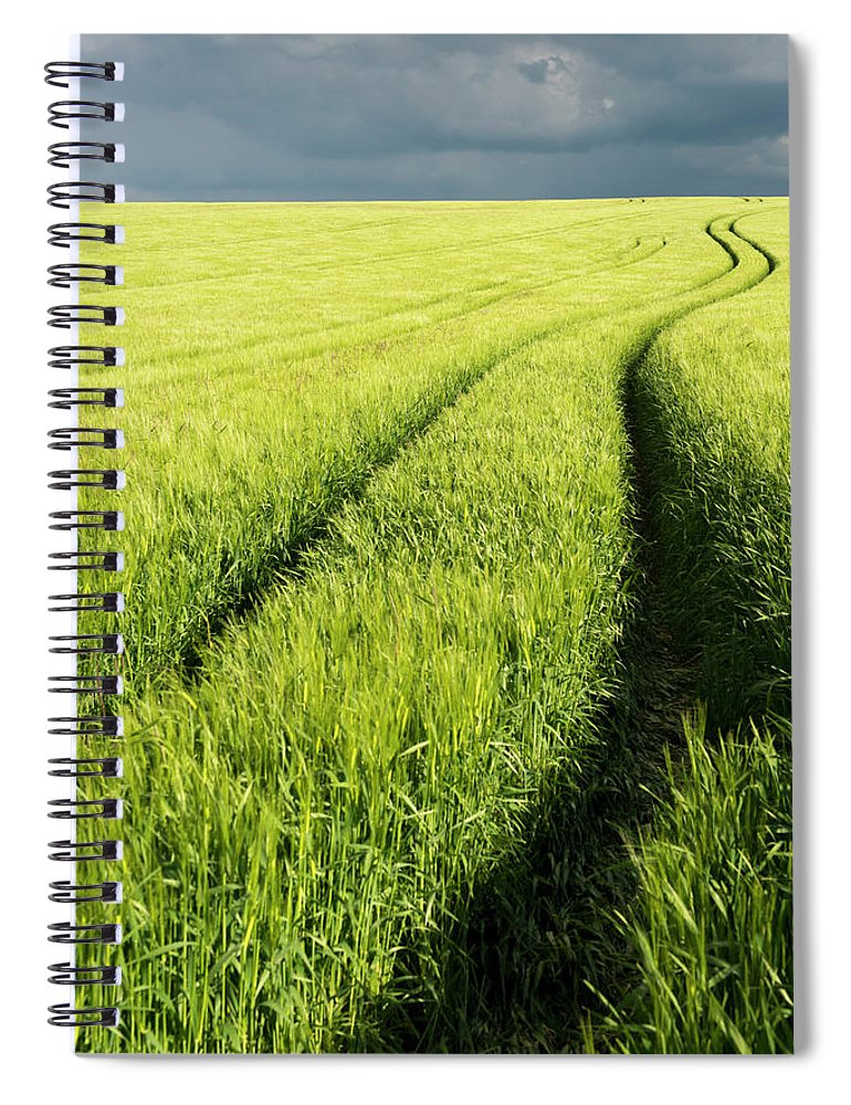 Scenics Spiral Notebook featuring the photograph Tire Tracks In Grain Field by Thomas Winz