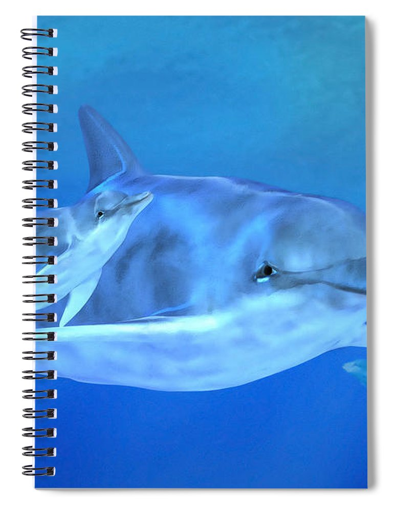 Dolphin Mother With Calf Spiral Notebook featuring the digital art Togetherness by John Edwards