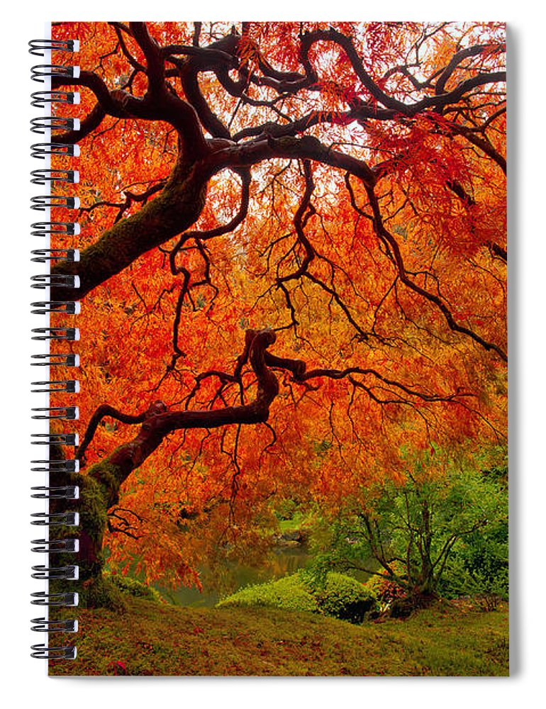 Portland Spiral Notebook featuring the photograph Tree Fire by Darren White
