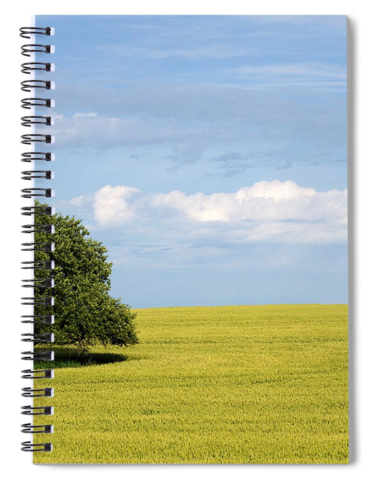 Grass Family Spiral Notebook featuring the photograph Trees In Wheat Field by Simplycreativephotography