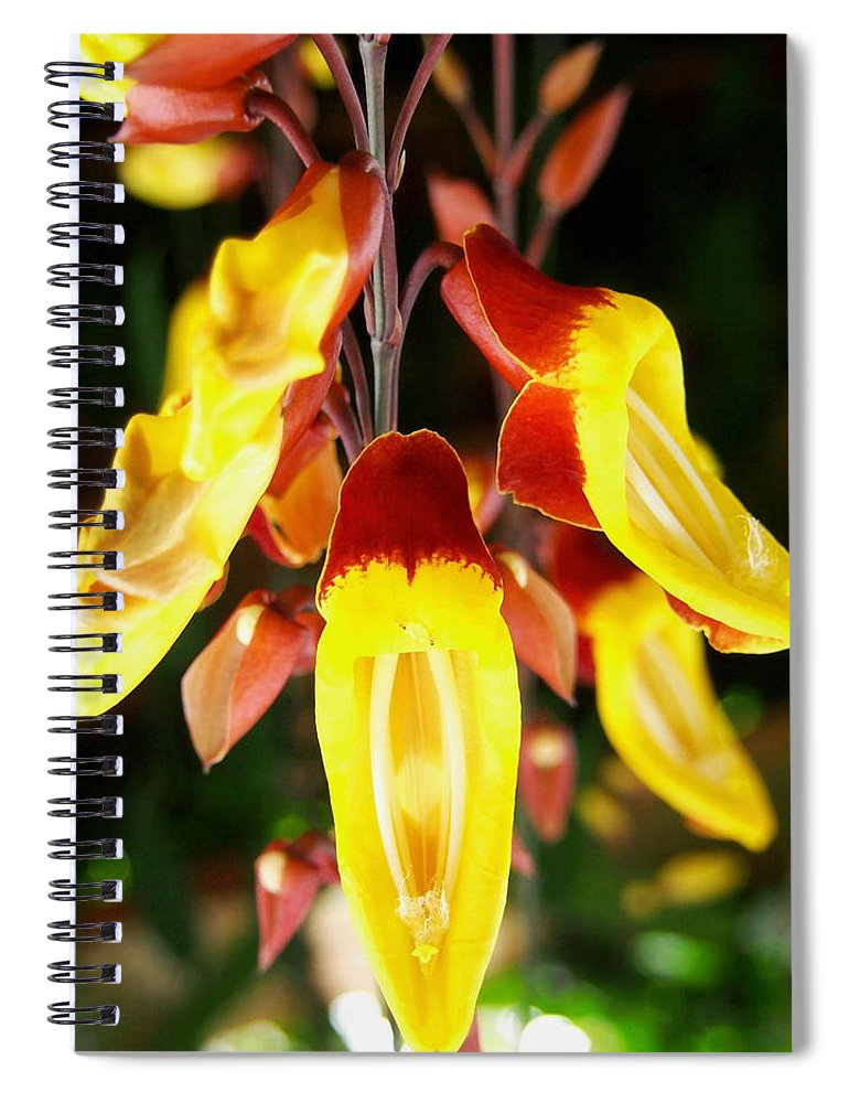 Tropical Yellow Hanging Flowers Spiral Notebook For Sale By Amy Mcdaniel