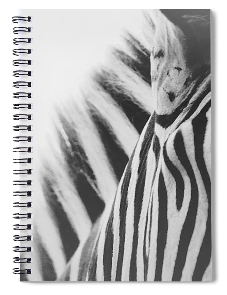 Black And White Spiral Notebook featuring the photograph Visions by Carrie Ann Grippo-Pike