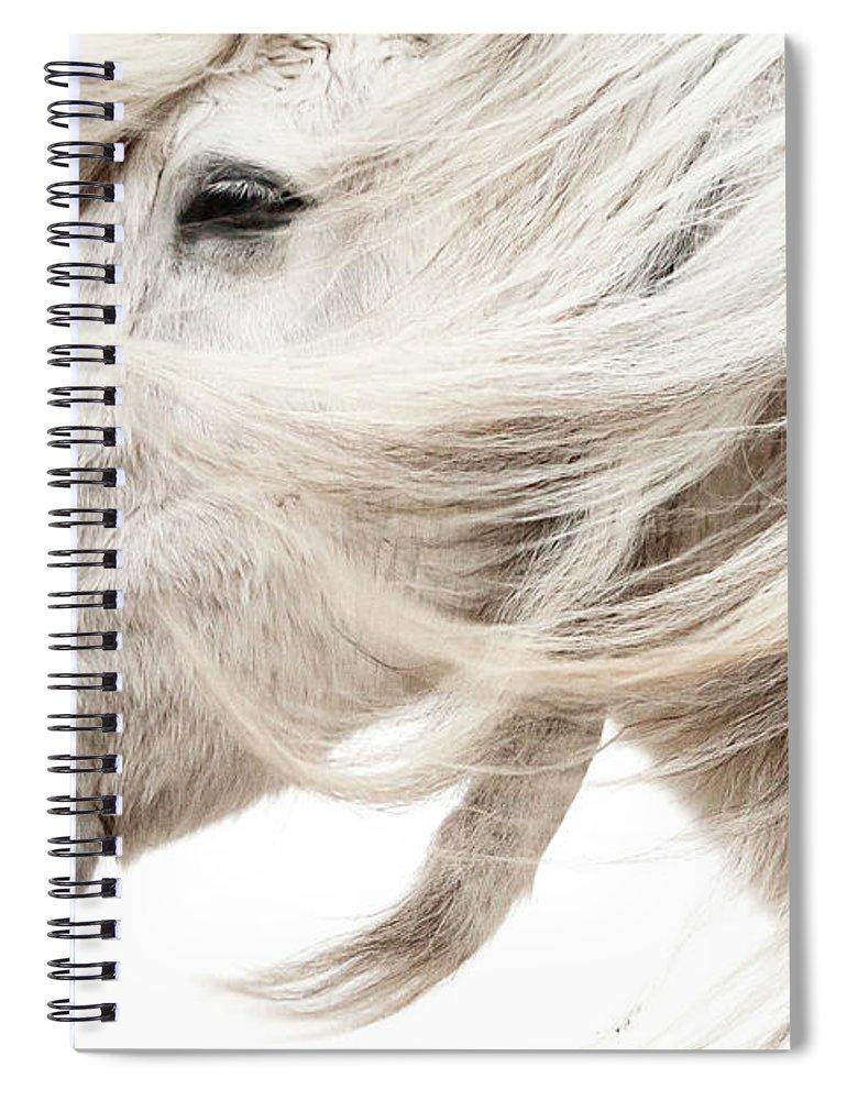 Wind Spiral Notebook featuring the photograph Waiting For Spring by Gigja Einarsdottir