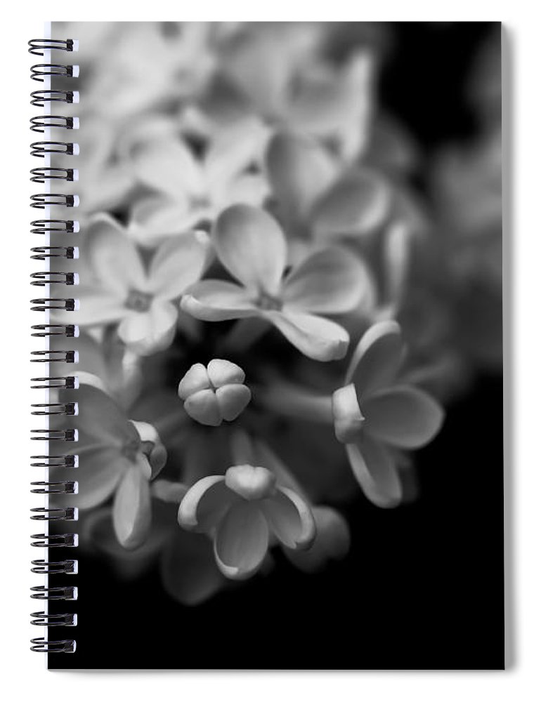 Flowers spiral notebook featuring the photograph white flowers in black and white by ramon martinez