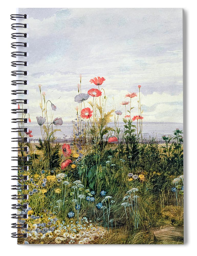 Meadow; Flowers; Irish; Wild; Landscape; Poppies Spiral Notebook featuring the painting Wildflowers With A View Of Dublin Dunleary by A Nicholl