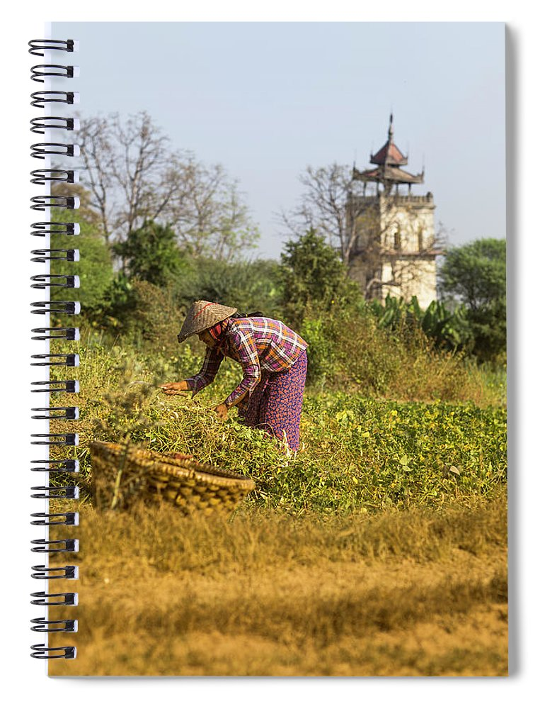 Three Quarter Length Spiral Notebook featuring the photograph Woman Weeding At Nanmyin Tower by Merten Snijders