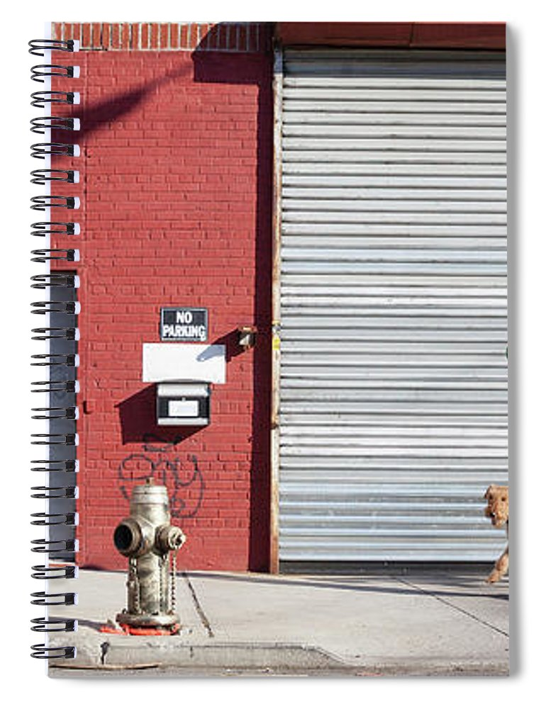 Pets Spiral Notebook featuring the photograph Young Man Walks Dog by Alex Potemkin