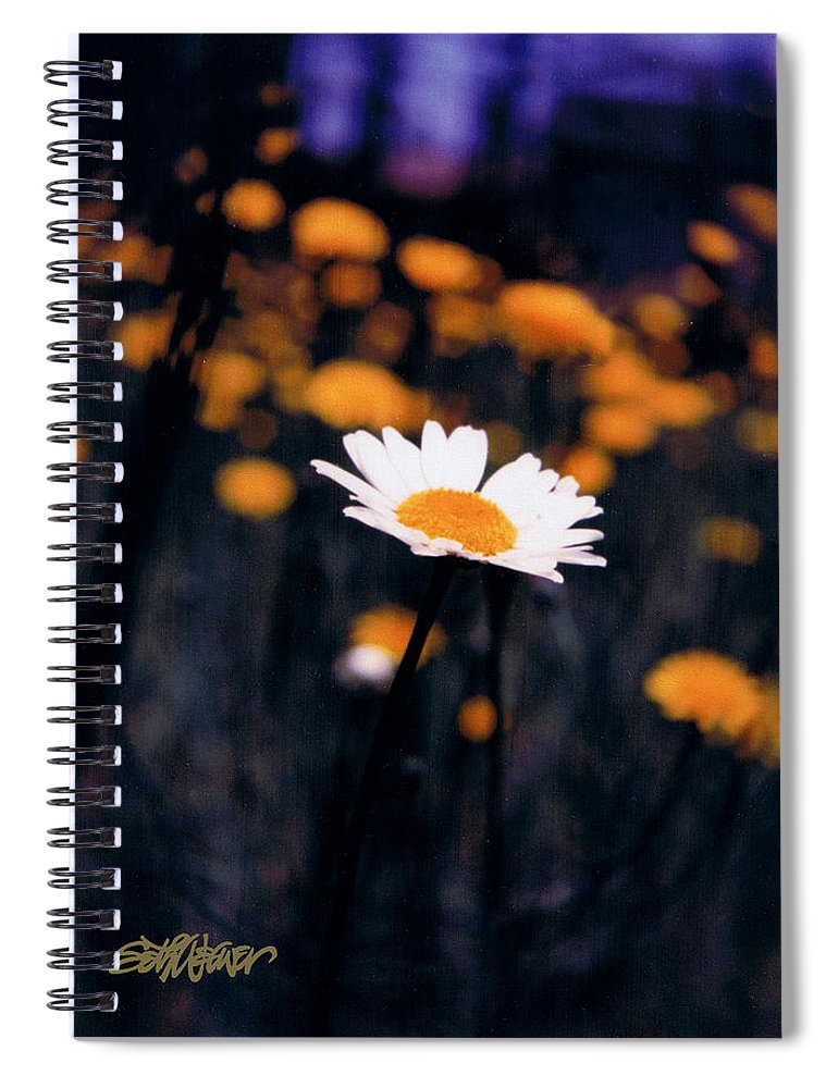 A Daisy Alone Spiral Notebook featuring the photograph A Daisy Alone by Seth Weaver