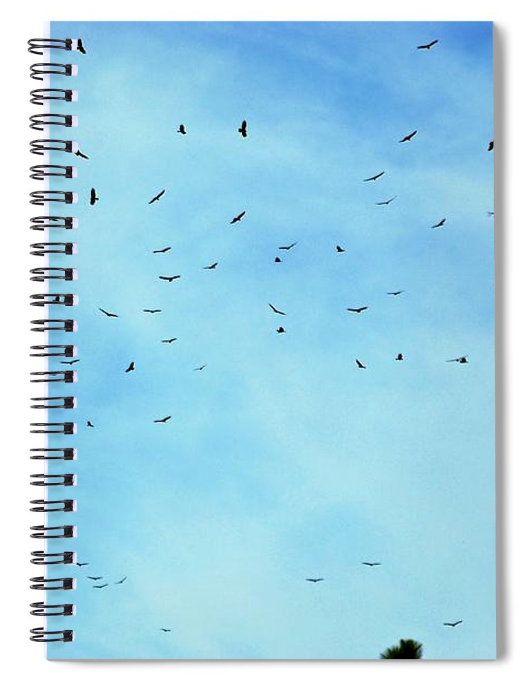 Turkey Vulture Spiral Notebook featuring the photograph 74 Turkey Vultures by Eric Tressler