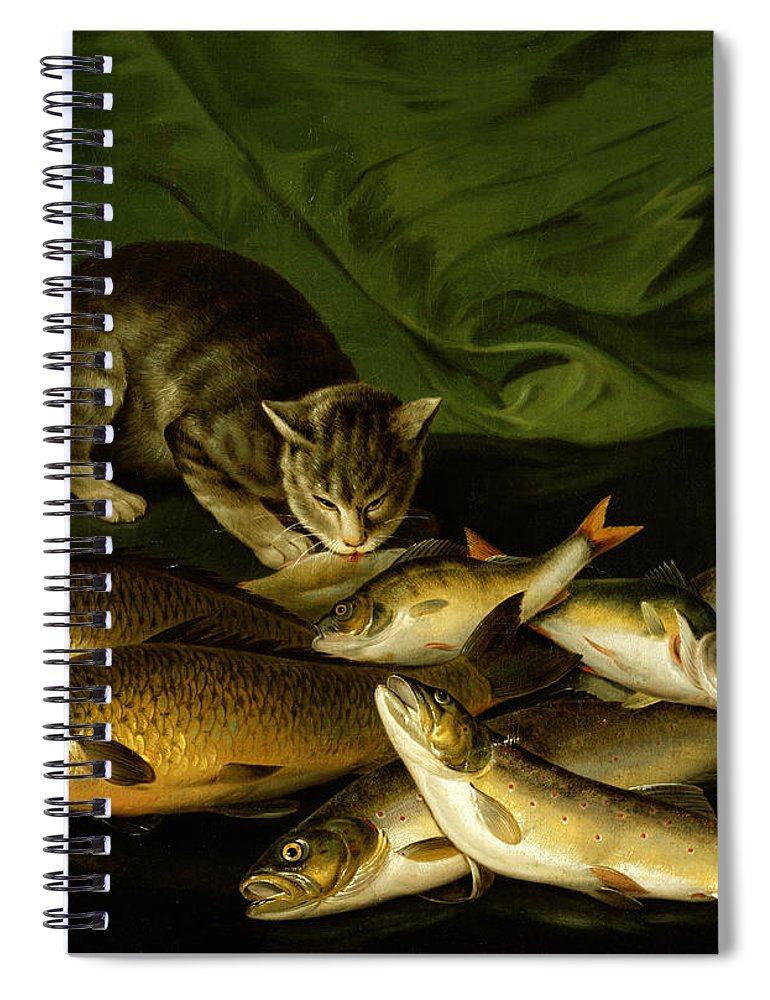 A Cat With Trout Perch And Carp On A Ledge Spiral Notebook