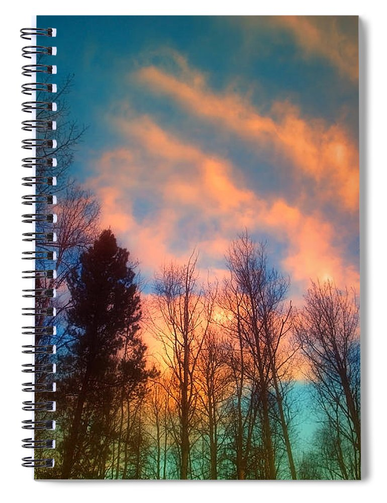 Trees Spiral Notebook featuring the photograph A Northern Sky by Tara Turner