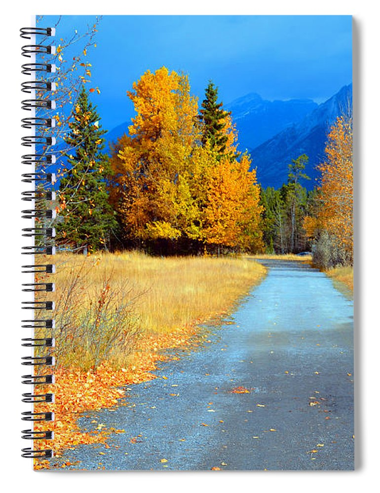 Canmore Spiral Notebook featuring the photograph Autumn Perspective by Tara Turner