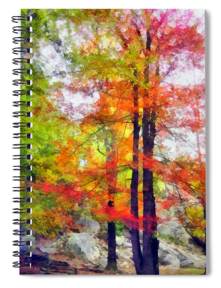 Tree Spiral Notebook featuring the photograph Autumnal Rainbow by Angelina Tamez